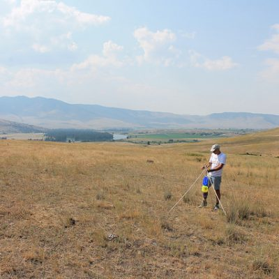 Wade Hoiland (IE Taxonomist) setting up a blue vane trap to sample native bees in the National Bison Range of western Montana