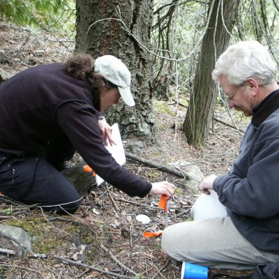Dwight Bergeron, Biologist with Montana Fish, Wildlife and Parks, sets a pitfall trap with a Kootenai Tribal employee.